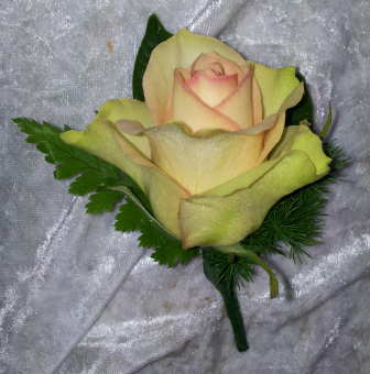 Rose Buttonhole 3