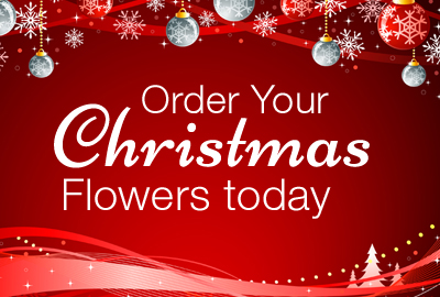Send Beautiful Fresh Flowers This Christmas - Lismore Florist