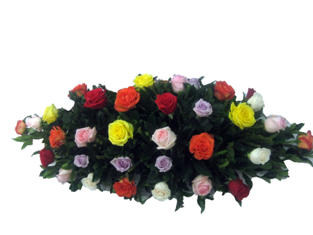 Large Mixed Coloured Roses