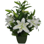Fragrant Oriental Lily Arrangement